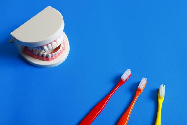 歯ブラシを清潔に保つことが出来る優れもの!「除菌ケース」