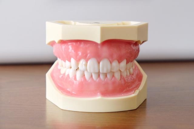 前歯の噛み合わせが「浅い」・「深い」で起こる問題とは?